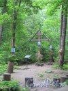 Парк Осиновая роща, Крест на месте деревянной церкови во имя свт. Василия Великого. фото июнь 2016 г.