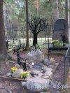Комаровский некрополь. Надгробие Евгения Калмановского, литератора (1927-1996). фото октябрь 2016 г.