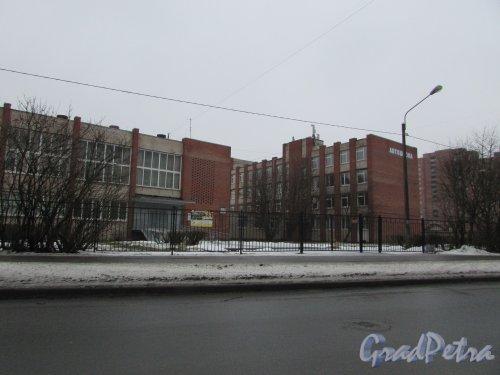 Авангардная улица, дом 16, литера А. Общий вид здания Санкт-Петербургского Лицея торговли и бизнеса. Фото 4 февраля 2017 года.