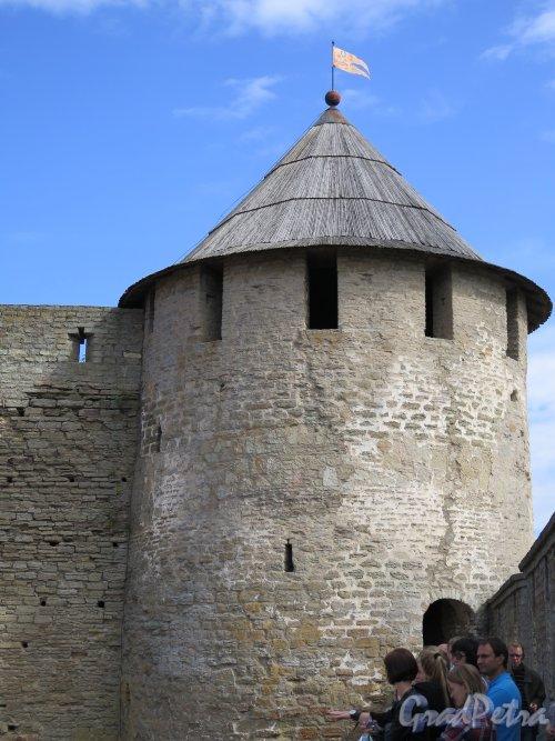 Псковская ул. (Ивангород), д.3. Ивангородская Крепость, Пороховая башня, фото июль 2015 г.