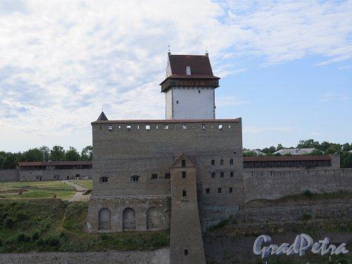 Ивангородская Крепость, Вид Нарвского замка на Эстонской стороне со стен Крепости.  фото июль 2015 г.