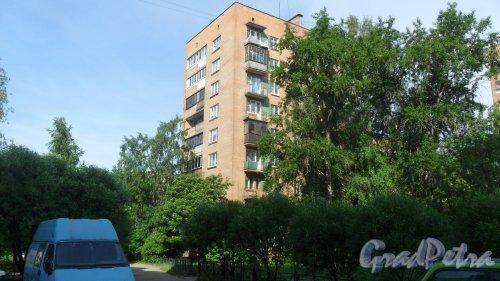 Будапештская улица, дом 55. 9-этажный жилой дом серии 1-528кп40 1967 года постройки. 1 парадная, 45 квартир. Фото 27 мая 2018 года.