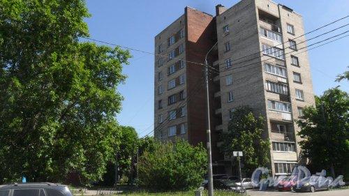 Белградская улица, дом 42, корпус 1. 9-этажный жилой дом серии 1-528кп40 1968 года постройки. 1 парадная, 45 квартир. Фото 29 мая 2018 года.