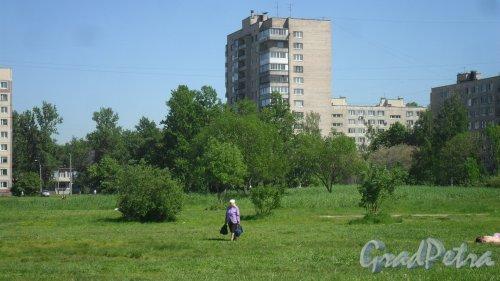 Улица Димитрова, дом 10, корпус 2, литер А. 14-этажный жилой дом серии 1-528кп80 1973 года постройки. 1 парадная, 97 квартир. Фото 29 мая 2018 года.