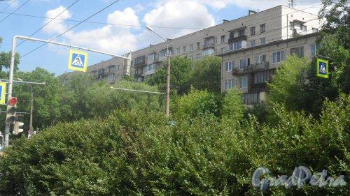 Будапештская улица, дом 38, корпус 1. 9-этажный жилой дом серии 1-528кп41 1966 года постройки. 4 парадные, 231 квартира. Фото 26 июня 2018 года.