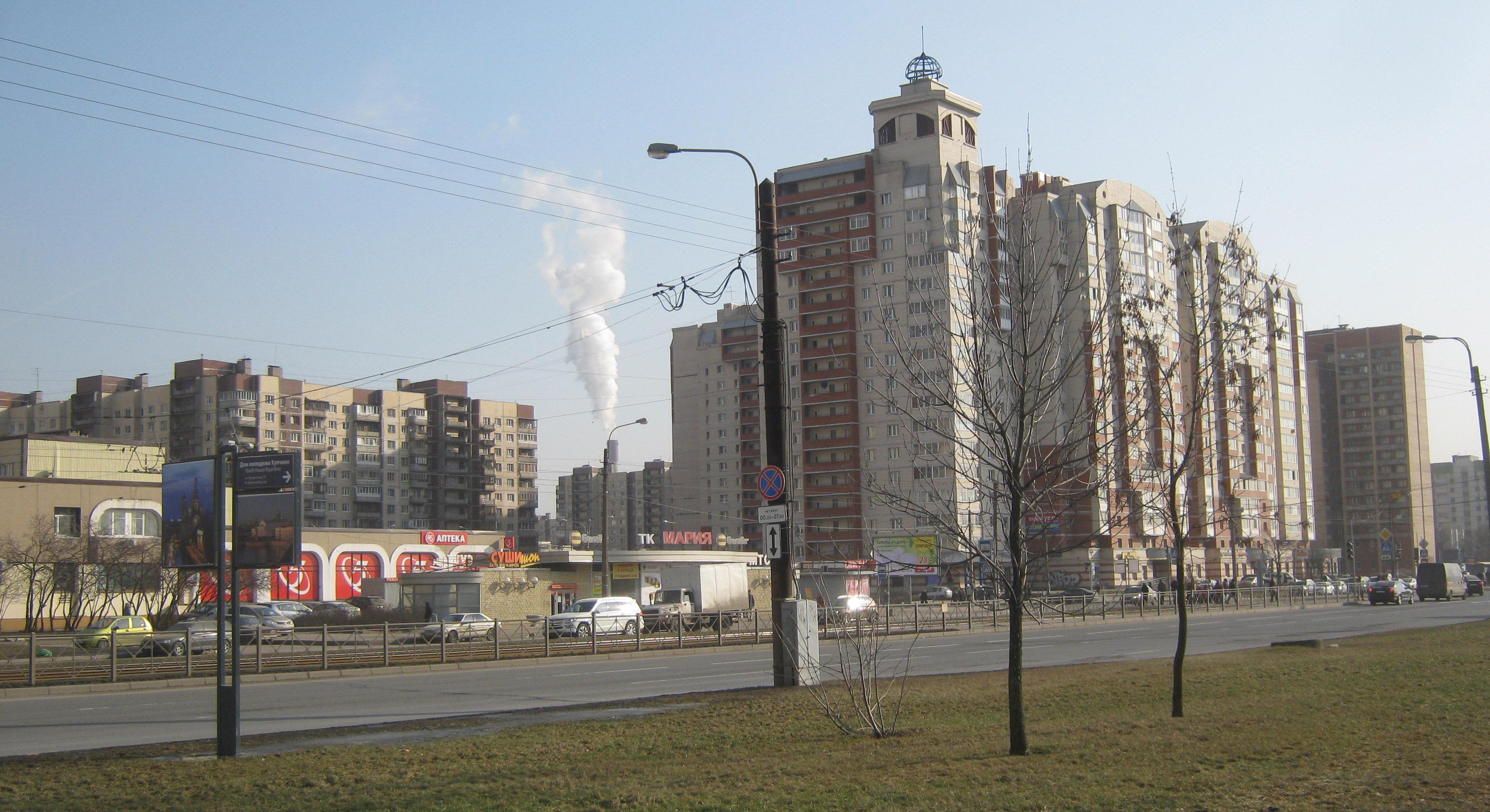 Очередной скандал: во Фрунзенском районе снова вырубают хорошие деревья